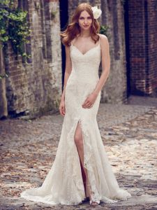 2018 Mermaid Bridal Gowns Lace Dots Tulle Spaghetti Straps Wedding Dress Z1059 pictures & photos