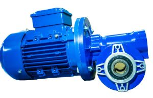 Bonfigilioli Series Worm Gearbox Vf Geared Motor pictures & photos