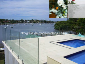 Swimming Fence Laminated Glass pictures & photos