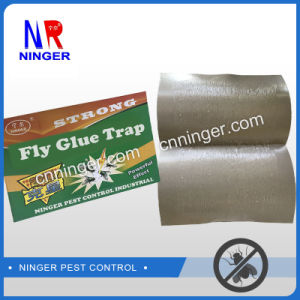 High Quality Fly Glue Board pictures & photos