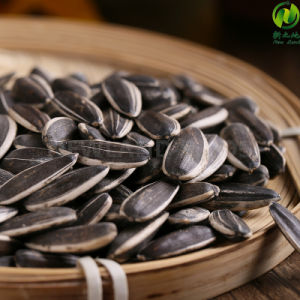 Best Sunflower Seeds 5009 with Hot Sale pictures & photos