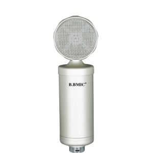 Senior Anchors The Microphone Microphone Condenser Mic