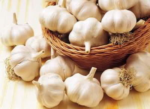 5.0cm Pure White Garlic for European Market pictures & photos