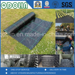 PP Ground Cover/Weed Mat/Weed Barrier Fabrics with Rutet Square pictures & photos