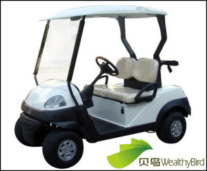 2016 New 3kw 2 Seat Electric Golf Car 418gsb pictures & photos