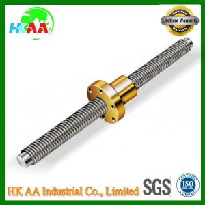 Trapezoidal Stainless Steel 304 Power Screw pictures & photos