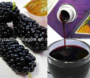 EU Quality, GMP 100%Natural Organic Wild Mulberry Fruit Juice, King Anthocyanins, Anticancer, Radiation Resistance, Anti-Aging, Nourishing Blood, Prolong Life pictures & photos