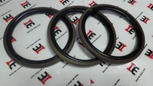 Oil Seal PTFE Spgo Seal Kits pictures & photos
