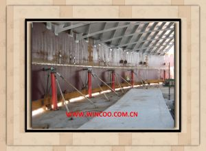 Hydraulic Jacking System for Tank Construction pictures & photos