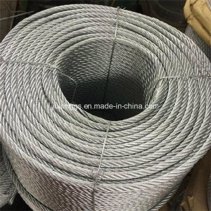 Galvanized Steel Wire Rope /Steel Wire Rope pictures & photos