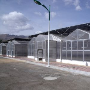 Economic Gardening Multi-Span PC Greenhouse pictures & photos