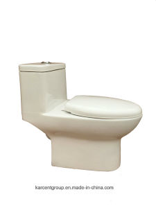 One Piece Toilet Siphonic Toilet Water Closet Wc 8019 pictures & photos