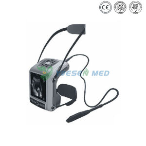 Ysb5200V Ce Approved Medical Portable Vet Ultrasound pictures & photos