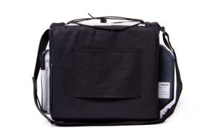 Portable Mini Soft Cooler Bag 12liter DC12V with Cooling and Warming for Car or Boat Application pictures & photos