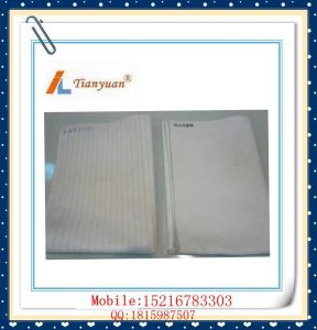 Hot Sale Antistatic Needle Felt Polyester PP Dust Filter Bag pictures & photos