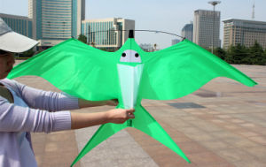 2016 New Hot Sale Sport Kite in China pictures & photos