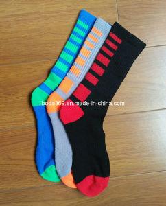 Boys Sports Half Terry Crew Socks