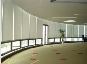 HDPE Roller Blinds for Window Shade / Sun Shade Net (Manufacturer) pictures & photos