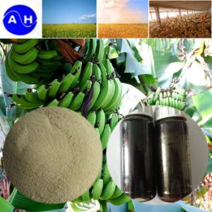 Liquid Calcium Boron Zinc Amino Acid Chelate Fertilizer Organic Liquid Amino Acid pictures & photos