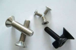 Hexagon Socket Head Cap Screws with Plating for Consumer Electronic Products Fixing pictures & photos