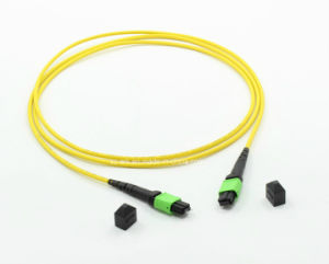 MPO/APC Cross Cable Fiber Optic for Fiber Integration pictures & photos