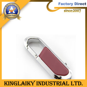 Customized Metal USB with Keyring for Promotion (KU-001U) pictures & photos