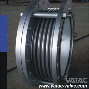 A105/Lf2/Ss304/Ss316 RF Ends Expansion Joint pictures & photos