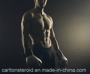 Bodybuilder Supplements Steroids Nandrolone Phenylpropionate/Npp Powder pictures & photos