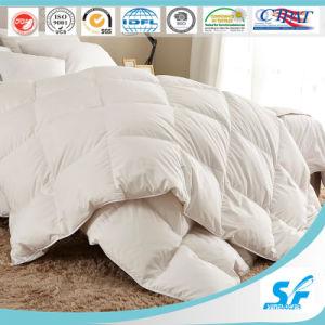 300tc Cotton Microfiber Filling Comforter/Quilt pictures & photos