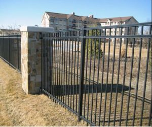 3rails Powder Coating Spear Top Wrought Iron Fence/Ornamental Steel Fence/Fencing pictures & photos