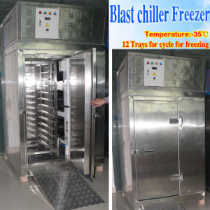 Blast Freezer Freezing at -35c pictures & photos