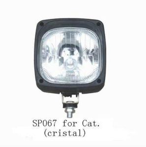 Cat Head Lamp pictures & photos