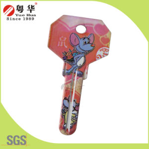 Mini 3D Animal Painted Color Remote Key Blanks for Locksmith pictures & photos