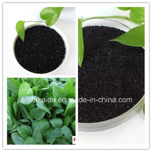 Organic Fertilizer-Potassium Humate