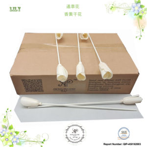 Ap Reed Diffuser Accessory, Dry Rattan Sola Flower, Lilium Brownii 3cm, 8PCS/Box pictures & photos