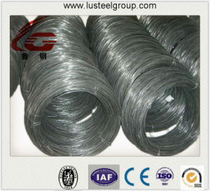 Cheap Wire Rod as Wire Drawing Material/Excellent Line