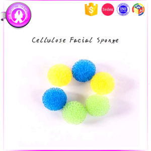 Water Drop 6PCS Natural Makeup Puff Sponge pictures & photos