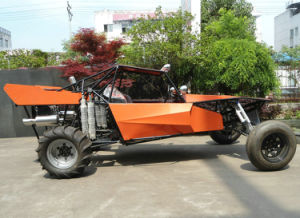 Do Youself Dune Buggy pictures & photos