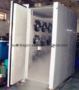Blast Freezing Machine for Fish pictures & photos