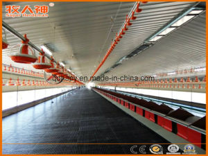 Customized Chicken House Machines with Steel Construction in Hot Sale pictures & photos