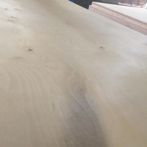 C/D Grade White Birch Plywood for Furniture pictures & photos