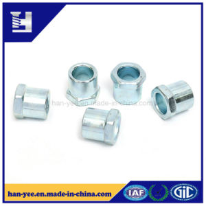 High Quality Hex Steel Cold Forming Fastener pictures & photos