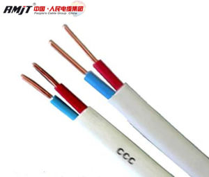 0.75mm2 1mm2 H03VV-F H05VV-F Copper Conductor Flat Electrical Wire pictures & photos
