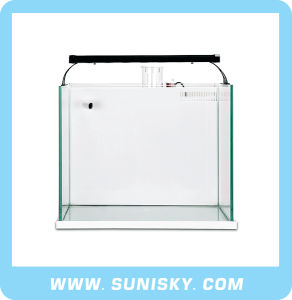 Backside Filter System Aquarium Glass Tank/ Aquarium Glass Tank Marine Fish pictures & photos