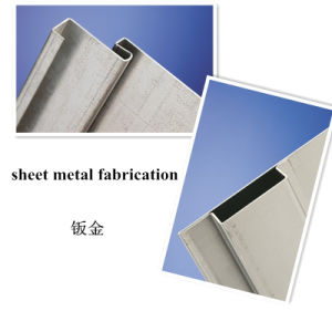 China Good Quality Metal Fabrication for Vertical Panels (GL019) pictures & photos