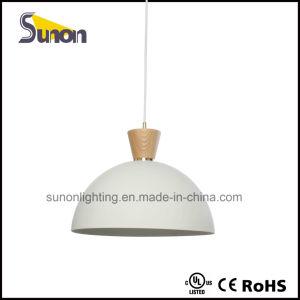 Metal Pendant Lighting 1 Light Hanging Lamp pictures & photos