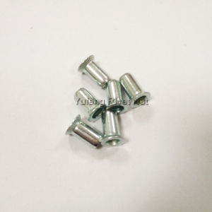 Zinc Plated Countersunk Head Cylindrical Rivet Nut pictures & photos