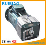 Good Quality 11kw/15 Kw Motor for Construction Elevator pictures & photos