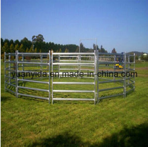 Hot Sale Hot Galvanized Feeding Cattle Sheep Panel Fence pictures & photos