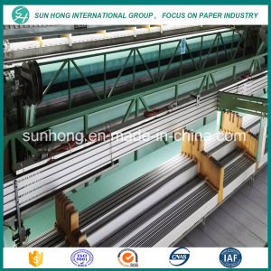 Double Layer Polyester Forming Fabric Suitable for Producing Big Packing Paper pictures & photos